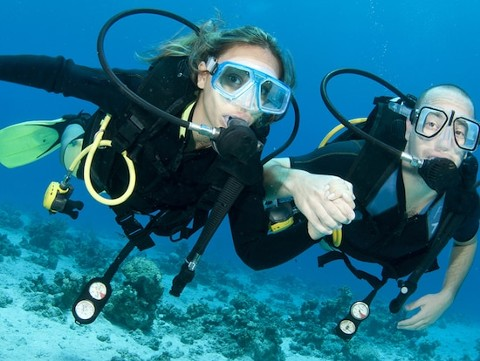 Scubu Diving Lessons and Tour